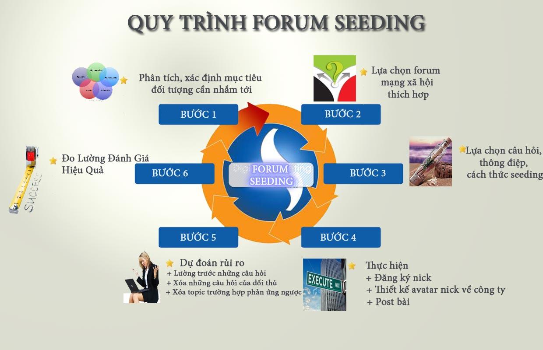 forum-seeding-quy-trinh.jpg